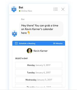 chatbot example on website
